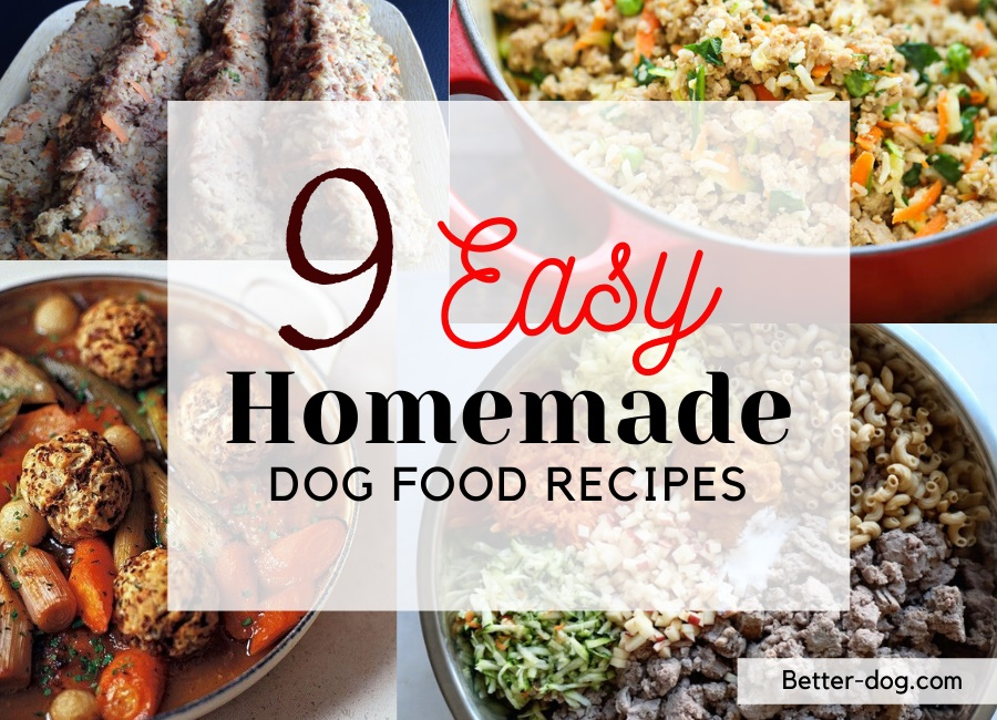9 Easy-to-make Homemade Dog Food Recipes