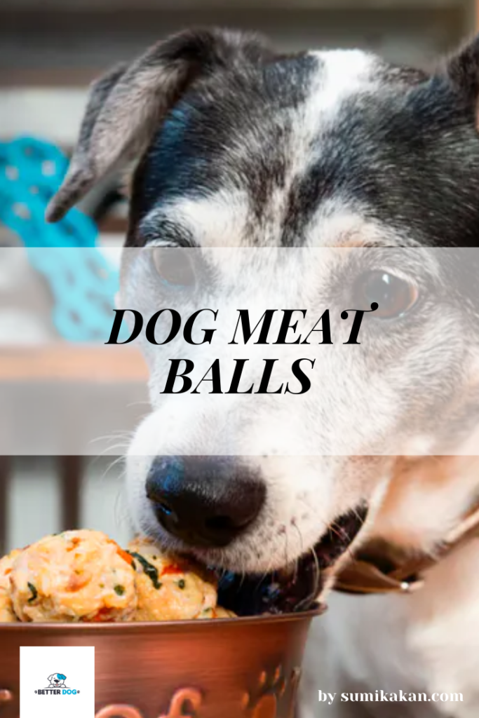 homemade dog food recipe-2