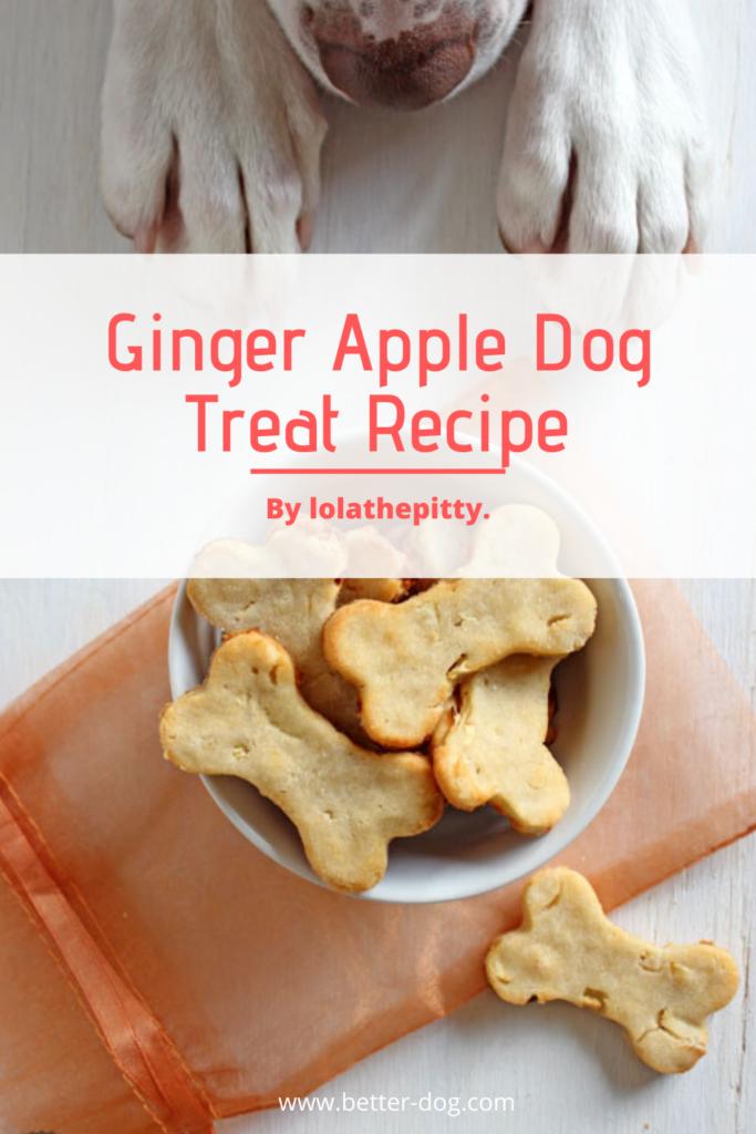 homemade ginger apple dog treat recipe