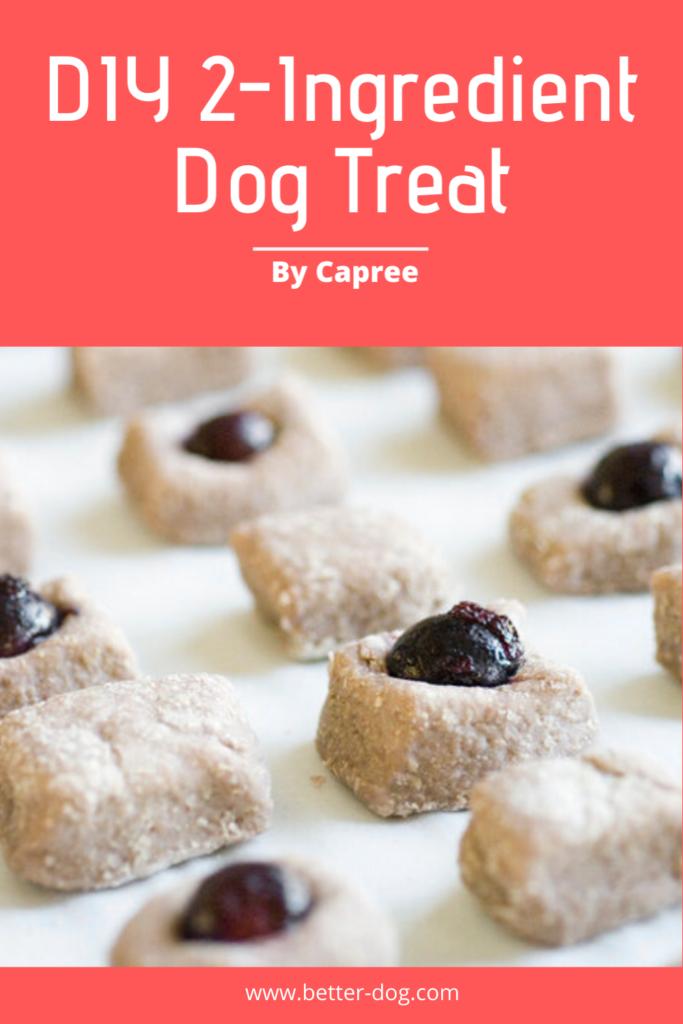Caprees homemade dog buscuit recipe