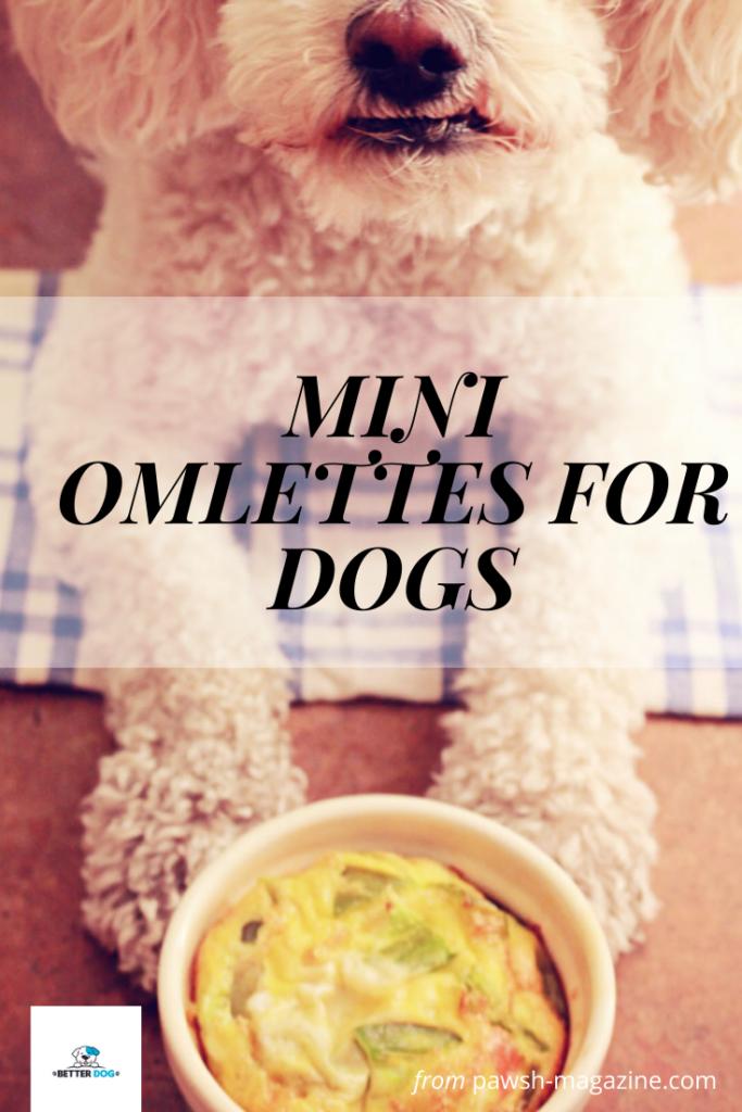 homemade dog food recipe-7