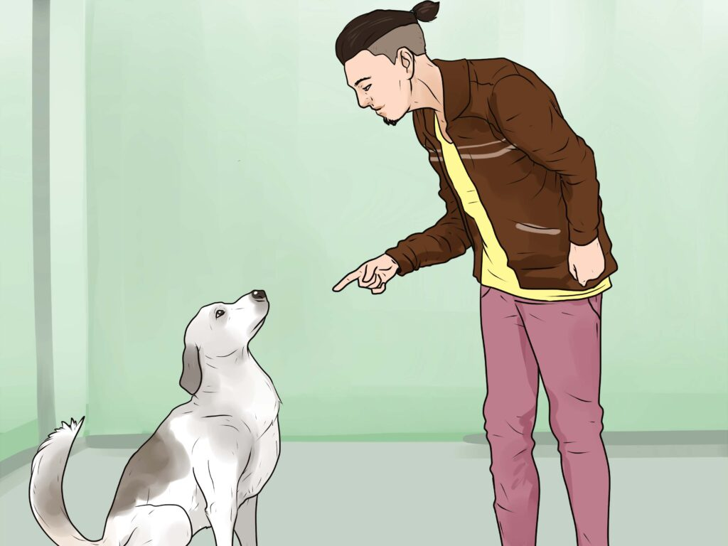 How to Stop Your Dog From Barking Excessively