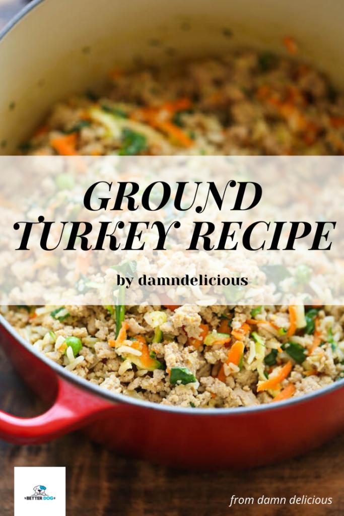 homemade dog food recipe-1