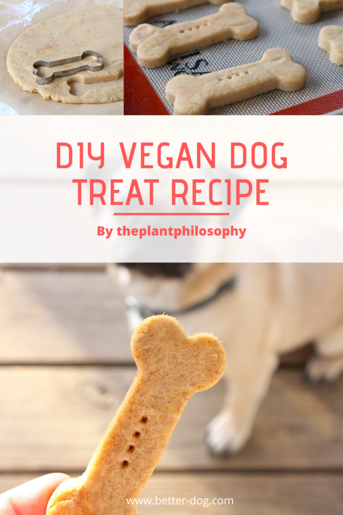 vegan homemade dog treat recipe
