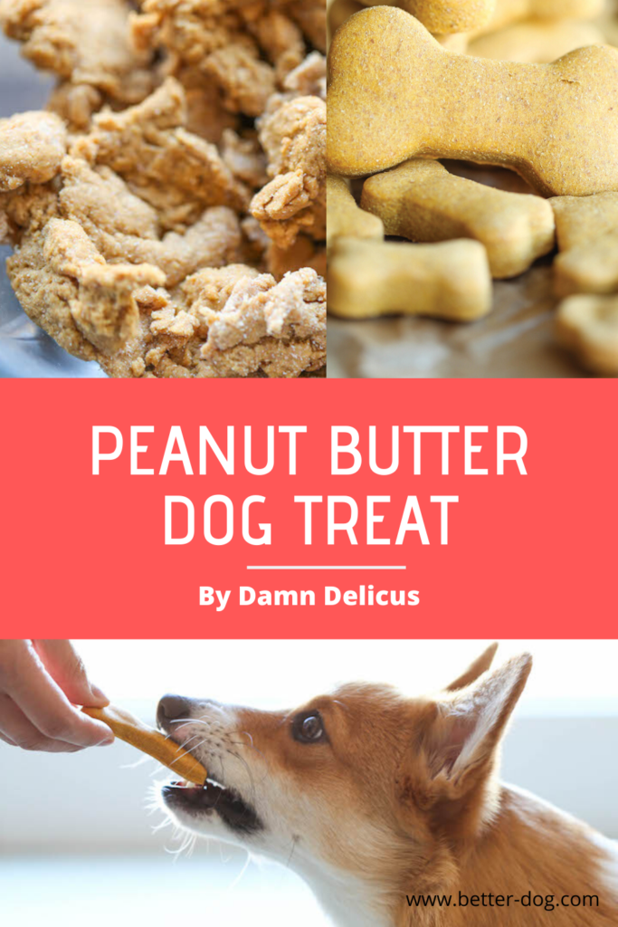 peanut butter homemade dog treat