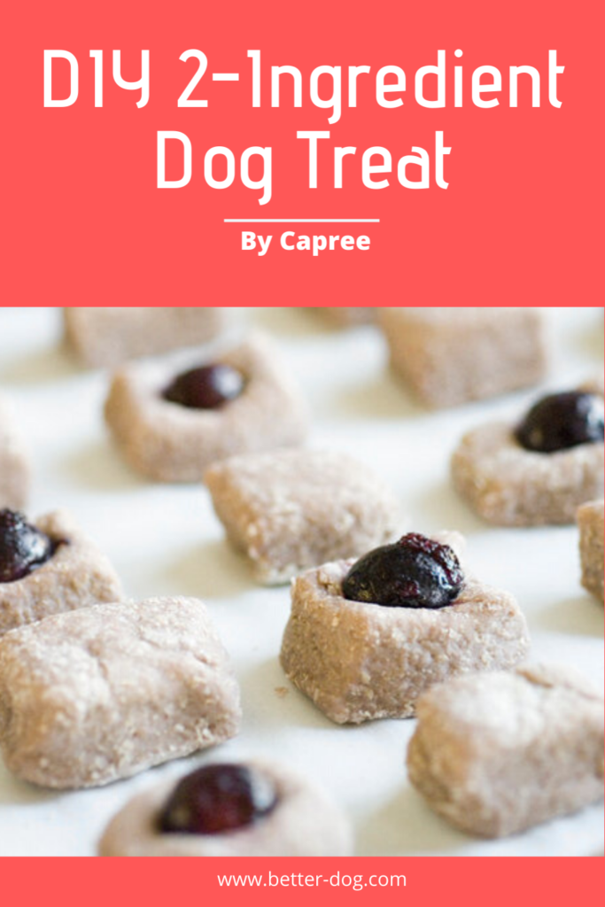 Caprees homemade dog buscuit recipe