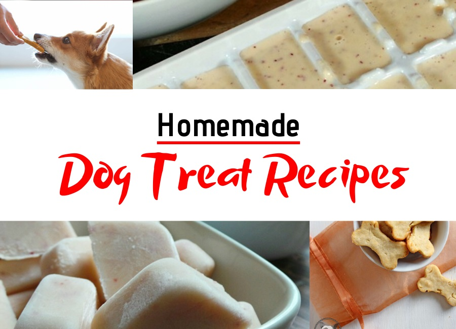 homemade dog treat recipes