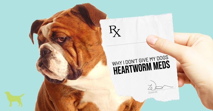 Dog Heartworm Medicine