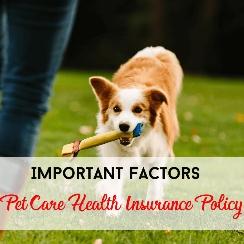 Pet Care Health Insurance Policy