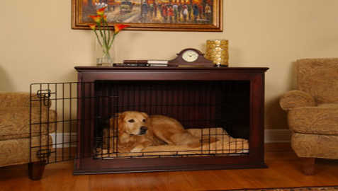 Crate Training For Golden Retriever