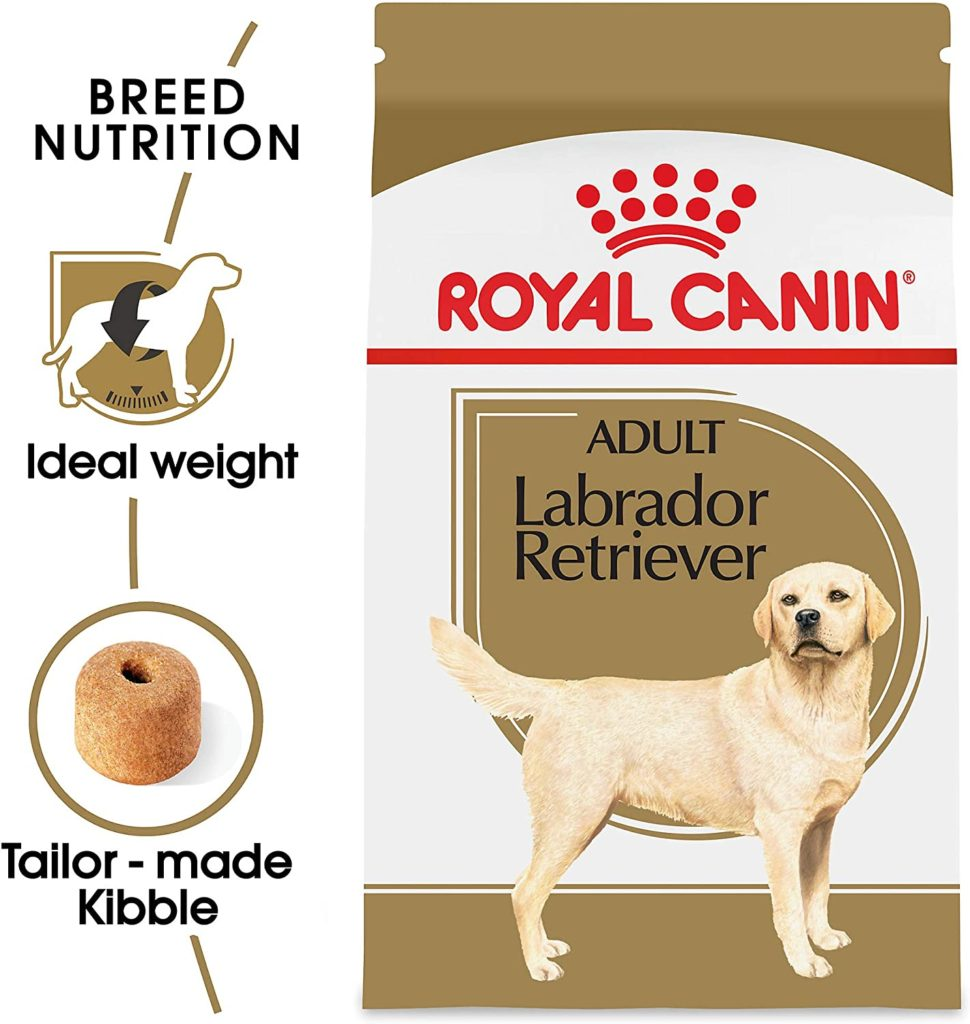 Best Dog Food Your Labs
