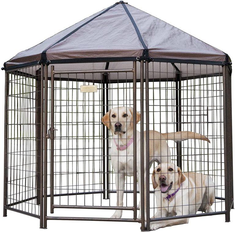 best dog kennel
