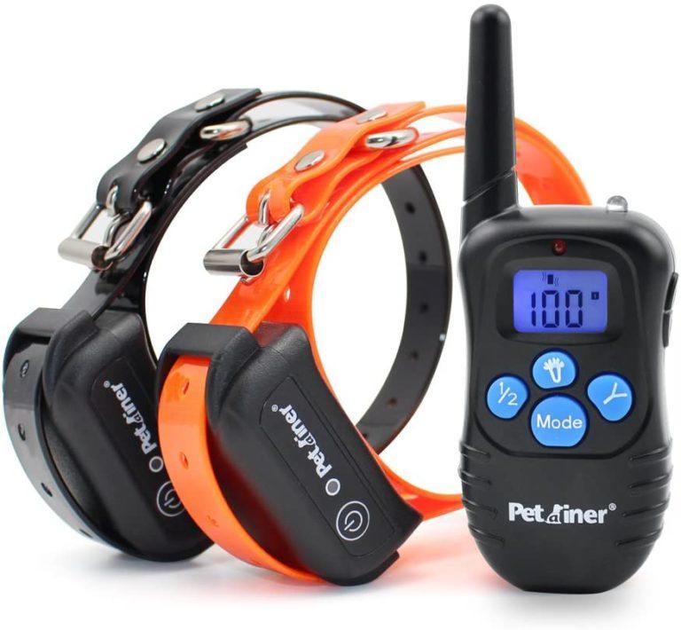best dog shock collar